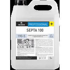 SEPTA 100 Универсальный моющий концентрат с содержанием час