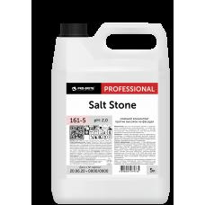 Salt Stone Моющий концентрат против высолов на фасадах
