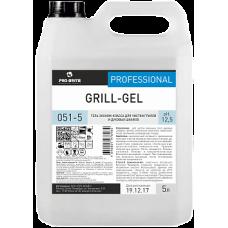 GRILL-GEL Гель эконом-класса для чистки грилей и духовых шкафов